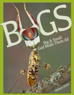 Bugs - Elementary Science Soil, Sea & Sky
